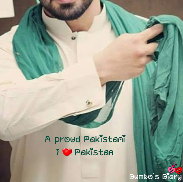 Boy on independence day fb dp