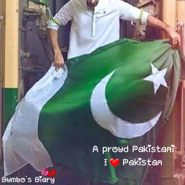 Pakistan Day dp with status for boys